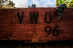 Van Westen Vineyards